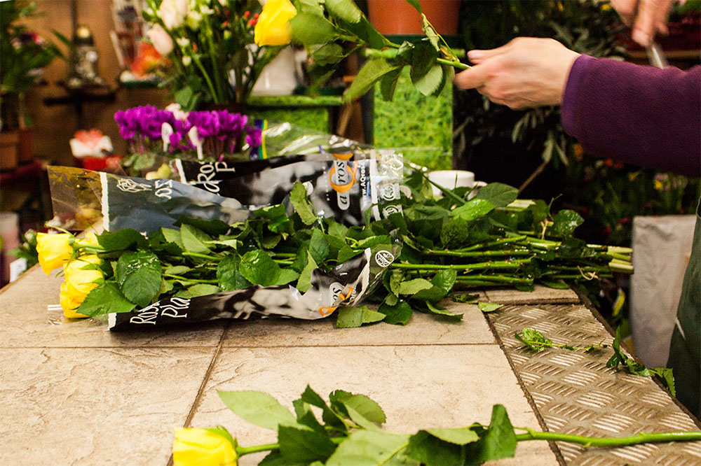 Blumen Claudia (c) STADTBEKANNT