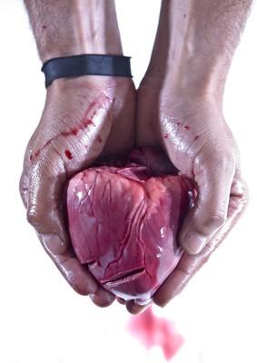 Organe spenden