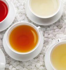 Demmers Teetassen (c) Demmer
