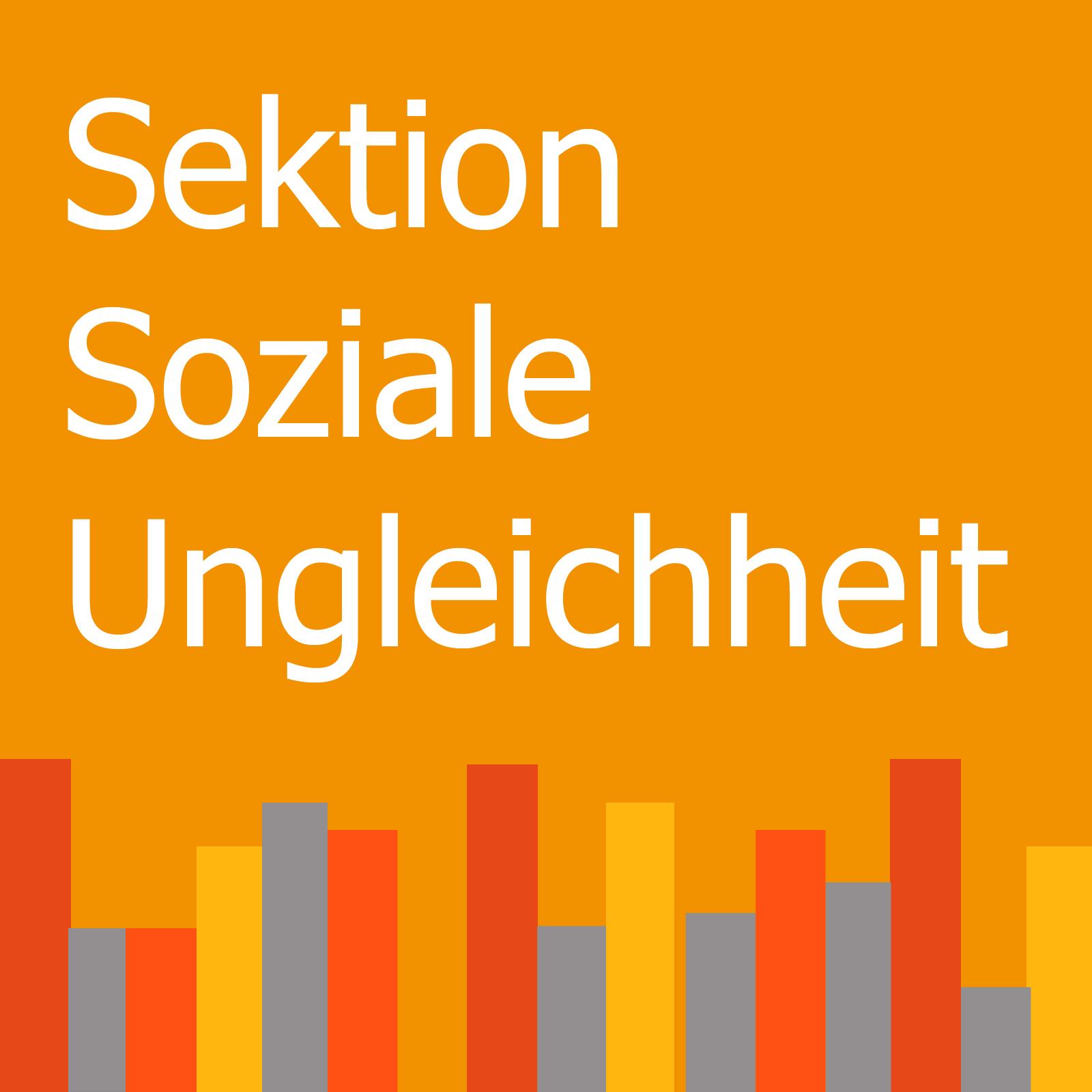 Sektion Soziale Ungleicheit