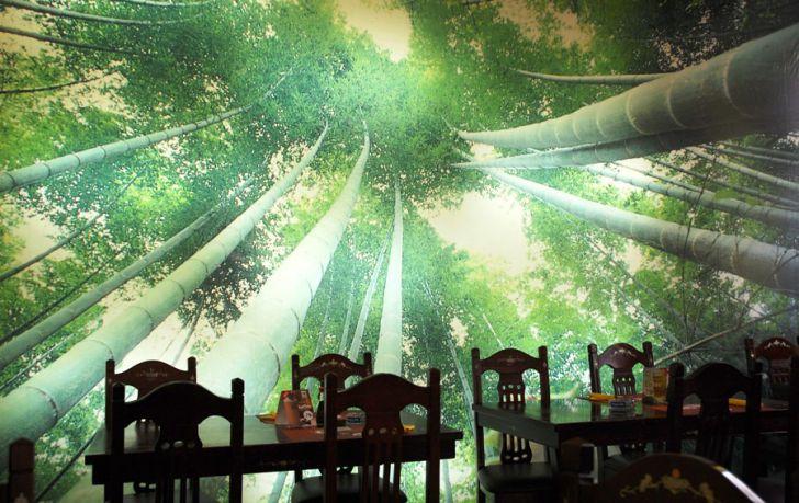 Bamboo ReBamboo Restaurant (c) Bamboostaurant