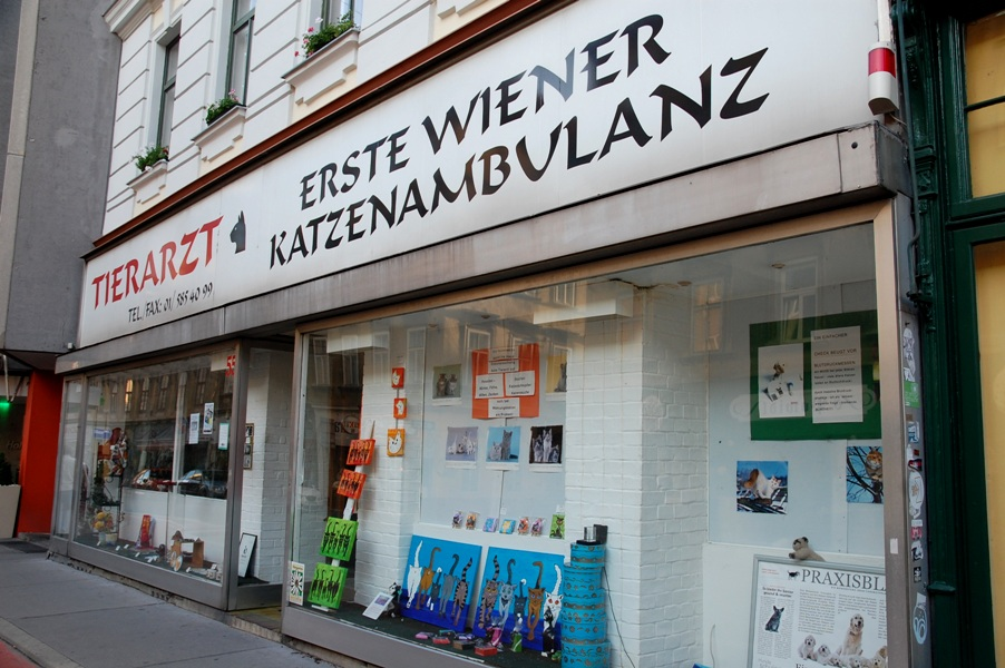 Fundstück 34 erste Wiener Katzenambulanz