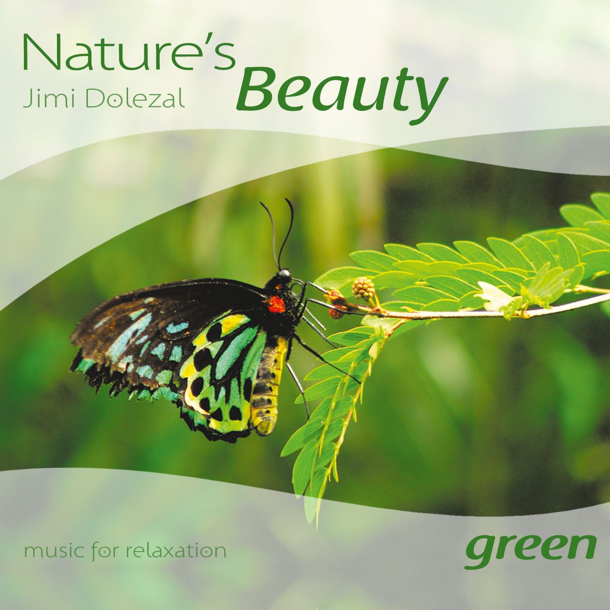 "Wellness-Musik: ""Nature's Beauty Green"" von Jimi Dolezal ..."