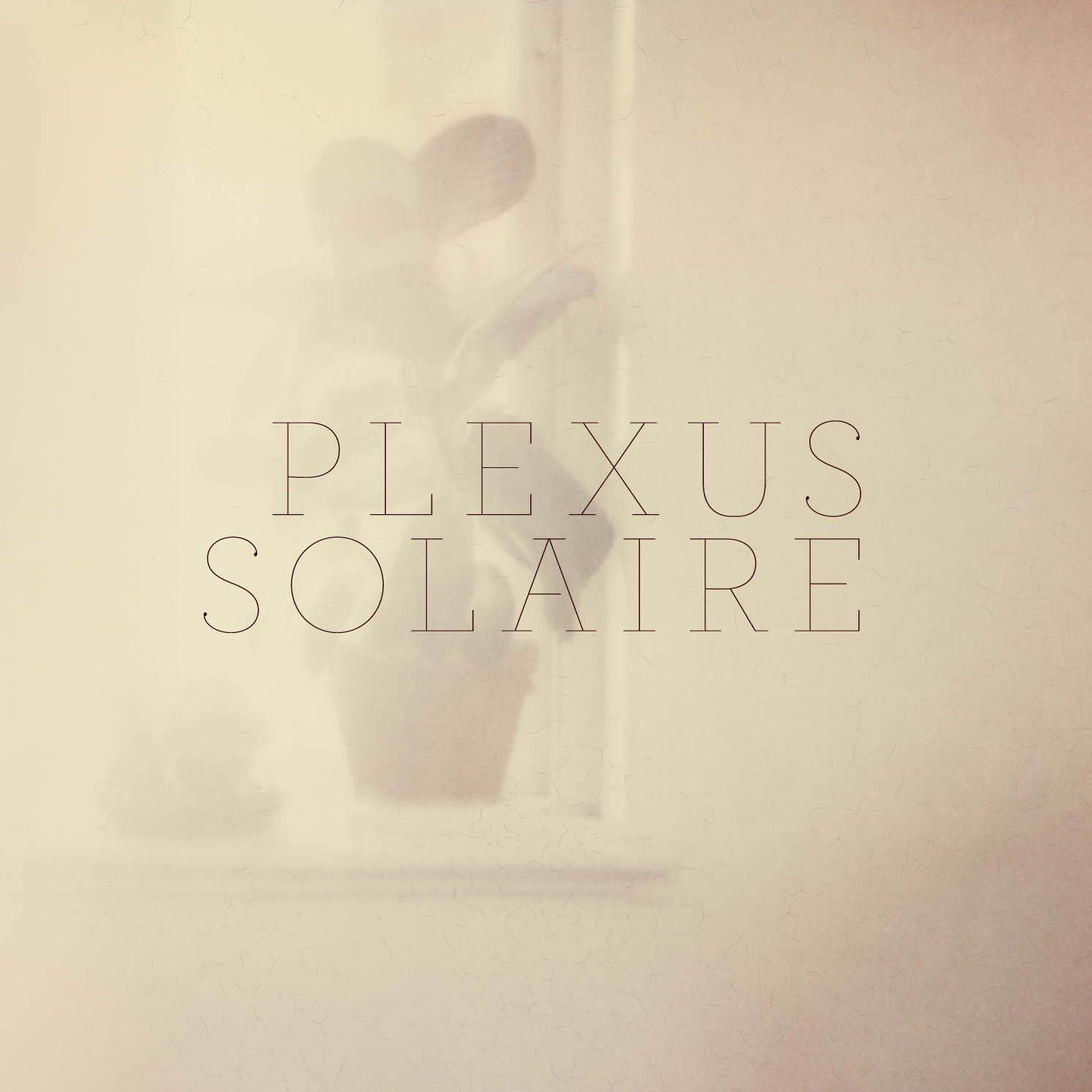 Plexus Solaire.