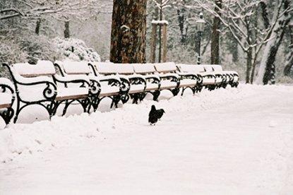 Schnee (c) STADTBEKANNT