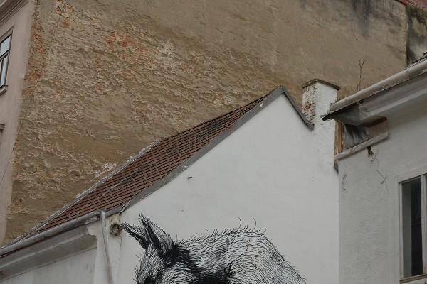 Wo sich Fuchs und Hase gute Nacht sagen