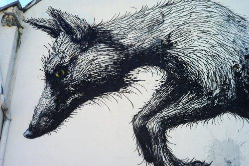 365 - The Fox House