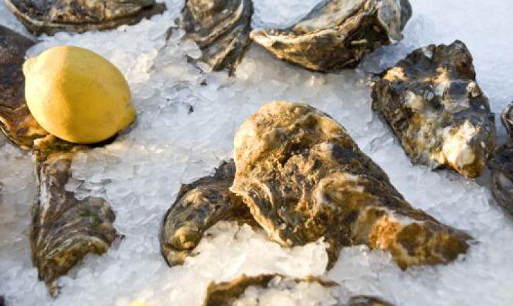 Austern (c) Fisch Gruber