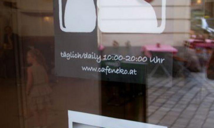Neko Katzencafe Foto: STADTBEKANNT