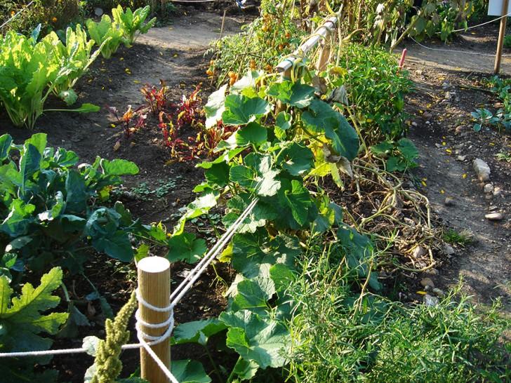 Guerilla Gardening (c) stadtbekannt