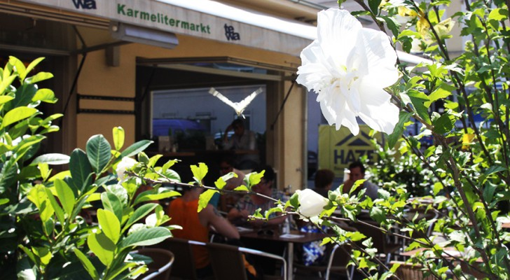 Wohin in Wien? 10.8. - 16.8.2012
