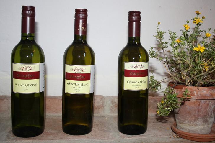 Weingut Stopfer Weinflaschen (c) Lukas Suk