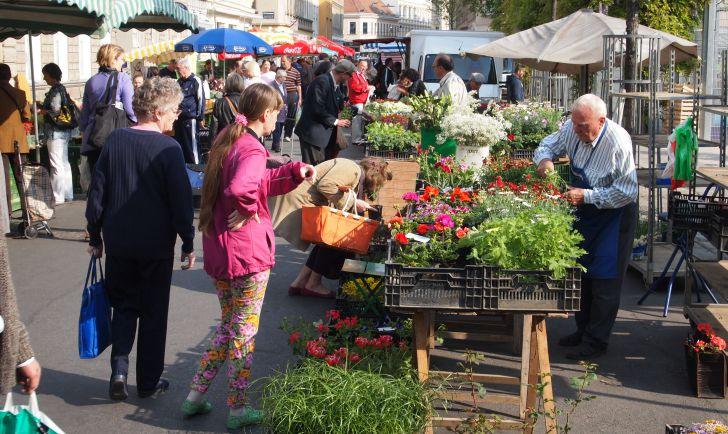 Yppenplatz Markt Blumen (c) stadtbekannt.at