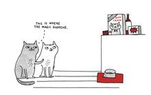 (c) a cat's life by gemma correll