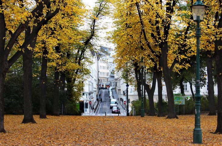 Stadtpark Herbst (c) stadtbekannt.at