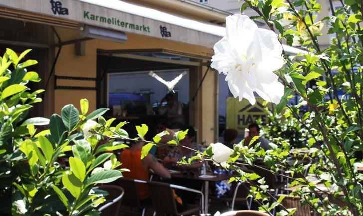 Karmelitermarkt Tewa (c) stadtbekannt.at