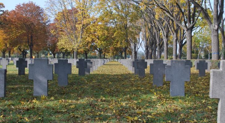 Wiener Zentralfriedhof Kriegsgräber (c) Mautner stadtbekannt.at