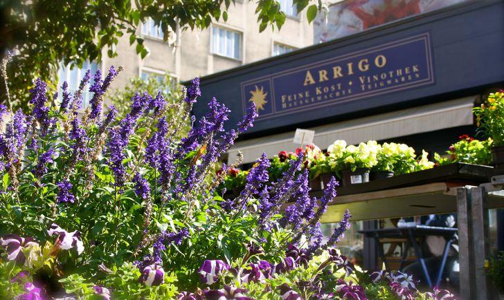 Arrigo (c) Nohl stadtbekannt.at