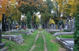 Wiener Zentralfriedhof Gräber (c) Mautner stadtbekannt.at