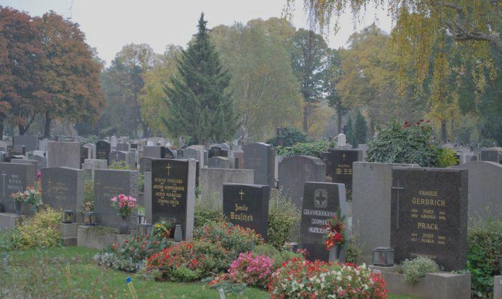Wiener Zentralfriedhof (c) Mautner stadtbekannt.at