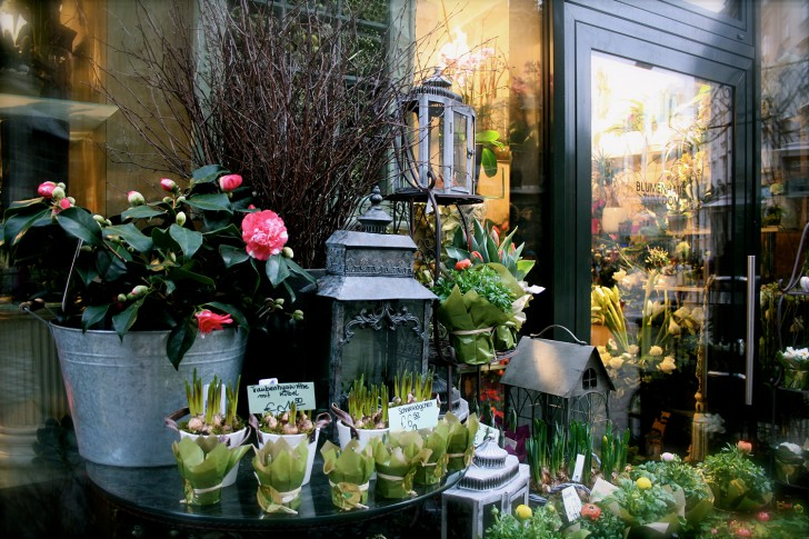 Blumenhaus zum Dom (c) Nohl stadtbekannt.at
