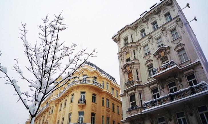 Wohin in Wien? 25.01 - 31.01.2013