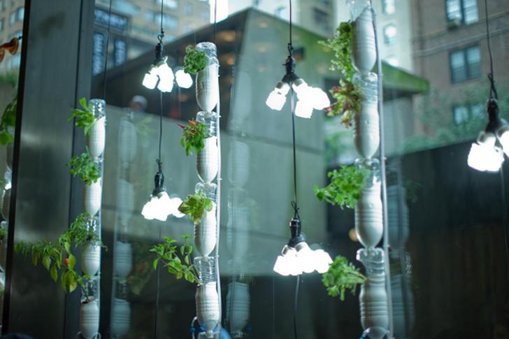 Hydroponic Vertical Gardens (c) Foto: papertastebuds.com