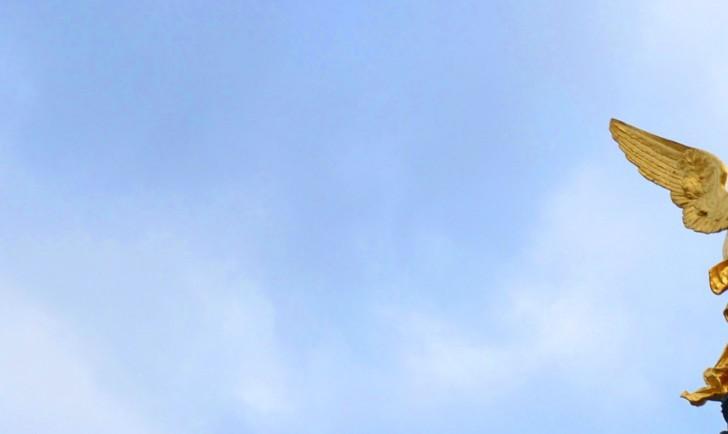 Fundstück Flügel