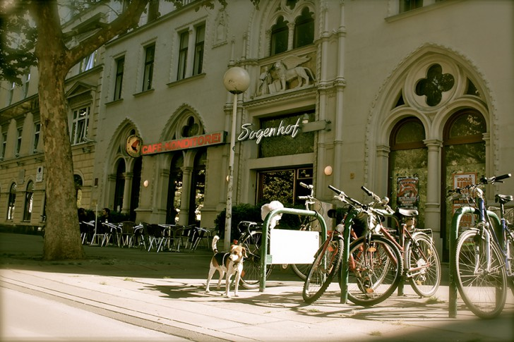 Cafe Dogenhof (c) Nohl stadtbekannt.at