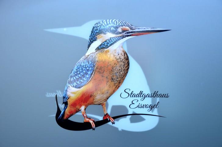 Eisvogel Logo (c) Mautner stadtbekannt