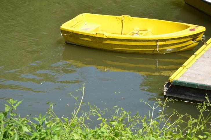 Heustadlwasser Boot (c) Mautner stadtbekannt.at