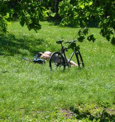 Prater Schlafender Radfahrer (c) Mautner stadtbekannt.at