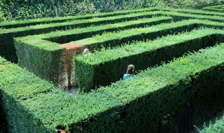 Labyrinth (c) STADTBEKANNT