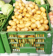 Food Coops Kartoffeln (c) Neumann stadtbekannt.at