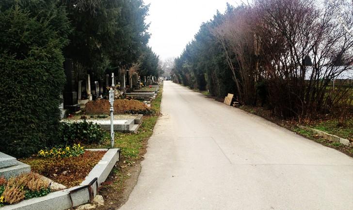 Zentralfriedhof (c) stadtbekannt.at