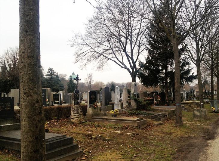 Zentralfriedhof Gräber (c) stadtbekannt.at