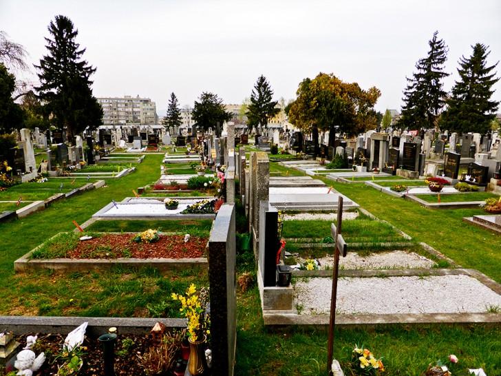 Friedhof Meidling (c) STADTBEKANNT