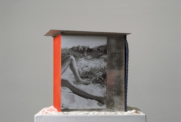 (c) Courtesy Sammlung FRAC Nord-Pas de Calais, Dunkerque und Galerie Buchholz, Berlin/Köln