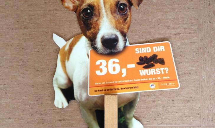 GackerlSackerl Hund (c) STADTBEKANNT