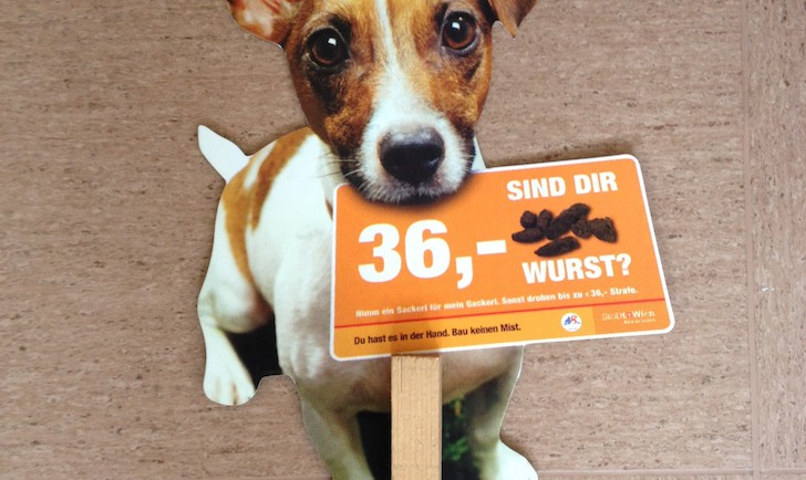 GackerlSackerl Hund (c) MH stadtbekannt.at