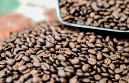 Kaffeeroesterei Brasil Kaffeebohne (c) STADTBEKANNT