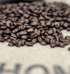 Kaffeerösterei Brasil die Bohnen (c) STADTBEKANNT