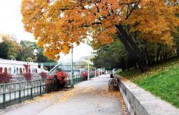 Herbst Stadtpark (c) STADTBEKANNT Fontanesi