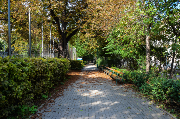 Josefstadt Schönborn Park Allee (c) STADTBEKANNT