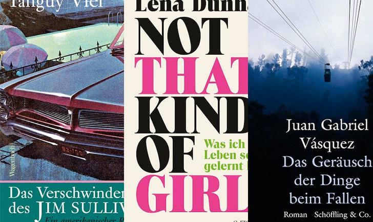 Foto: Cover Das Verschwinden des Jim Sullivan / Not that kind of girl / Das Geräusch der Dinge beim Fallen