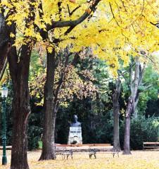 Herbst Stadtpark (c) STADTBEKANNT