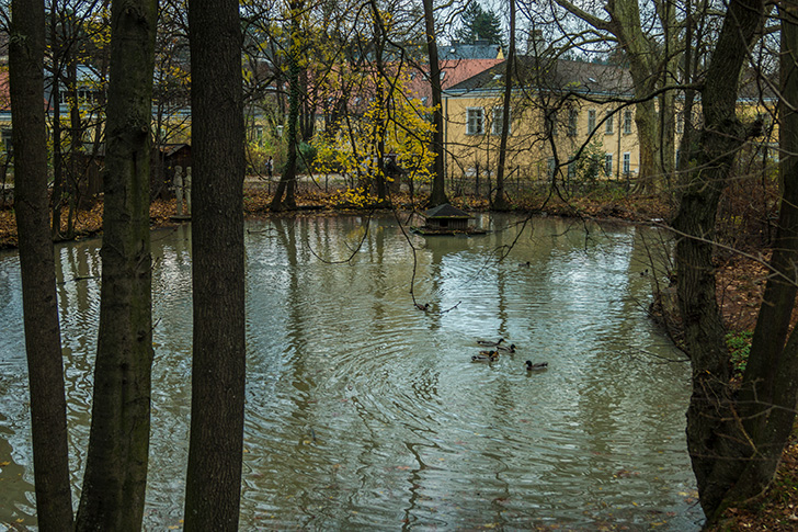 Poetzleinsdorfer Schlosspark Teich (c) STADTBEKANNT