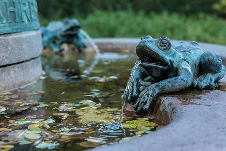 Wieden Frosch Brunnen (c) STADTBEKANN Zohmann