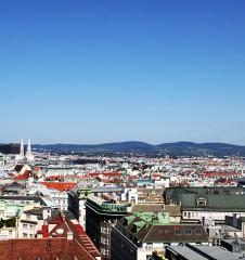 Ausblick über Wien (c) STADTBEKANNT