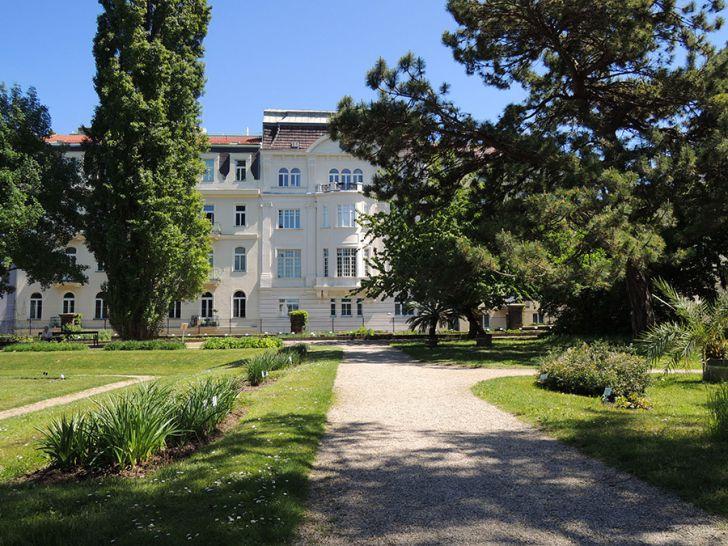 Botanischer Garten Wien (c) STADTBEKANNT Mallmann
